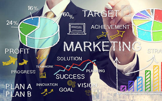 dirección de mercadotecnia